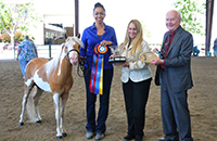 Cherryville Majic's Sir Lancelot and Marcy Parsons awards presentation with Kim Sterchi and Jim Curry